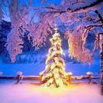 natale neve