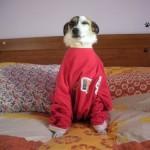 valentina in pigiama
