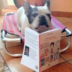 bulldog libro