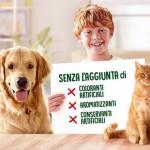 cof cane gatto 3