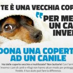 coperta-cane