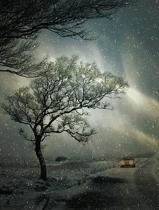 winter-2959849_640
